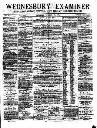 cover page of Midland Examiner and Times published on October 28, 1876